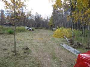 John Kundert's Manitoba Nudist Scrapbook: Gallery 02/01...Clearing roads and land