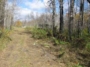 John Kundert's Manitoba Nudist Scrapbook: Gallery 02/04...Clearing roads and land