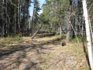 John Kundert's Manitoba Nudist Scrapbook: Gallery 02/08...Clearing roads and land