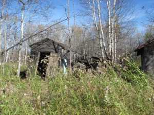 John Kundert's Manitoba Nudist Scrapbook: Gallery 02/25...Clearing roads and land