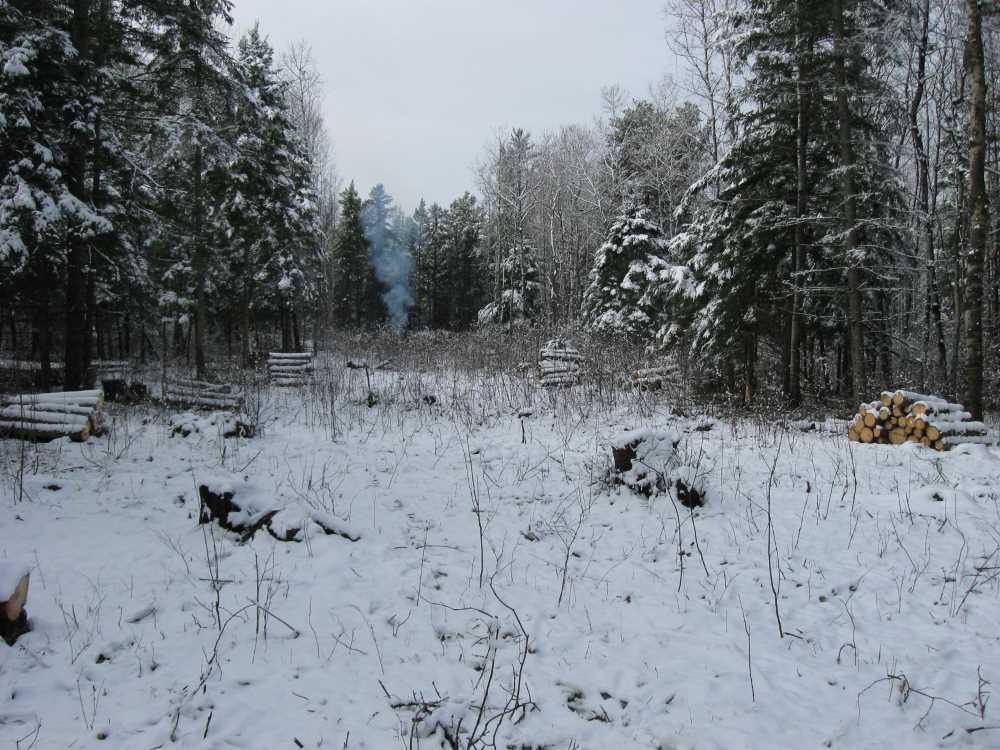 John Kundert's Manitoba Nudist Scrapbook: Gallery 03/28...Clearing the Hydro line corridor