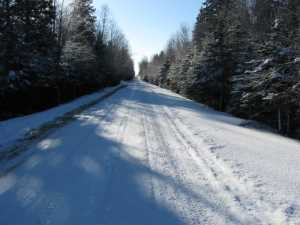 John Kundert's Manitoba Nudist Scrapbook: Gallery 05/01...The new land under December snow