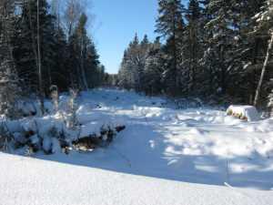 John Kundert's Manitoba Nudist Scrapbook: Gallery 05/04...The new land under December snow