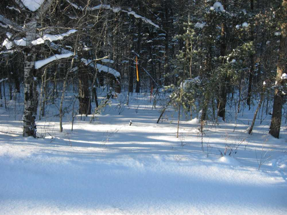 John Kundert's Manitoba Nudist Scrapbook: Gallery 05/08...The new land under December snow