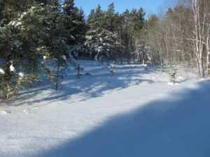 John Kundert's Manitoba Nudist Scrapbook: Gallery 05/11...The new land under December snow