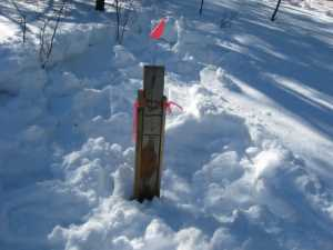 John Kundert's Manitoba Nudist Scrapbook: Gallery 06/04...Hydro tries winter pole installation