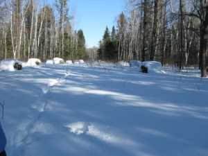 John Kundert's Manitoba Nudist Scrapbook: Gallery 06/05...Hydro tries winter pole installation
