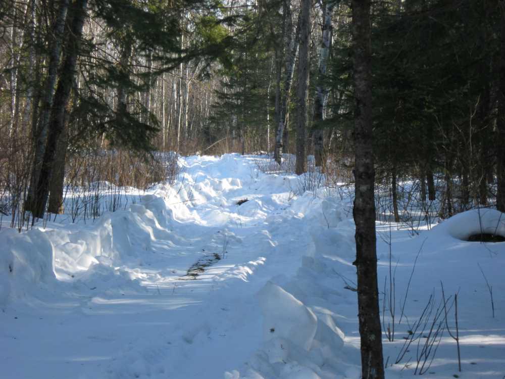 John Kundert's Manitoba Nudist Scrapbook: Gallery 06/08...Hydro tries winter pole installation