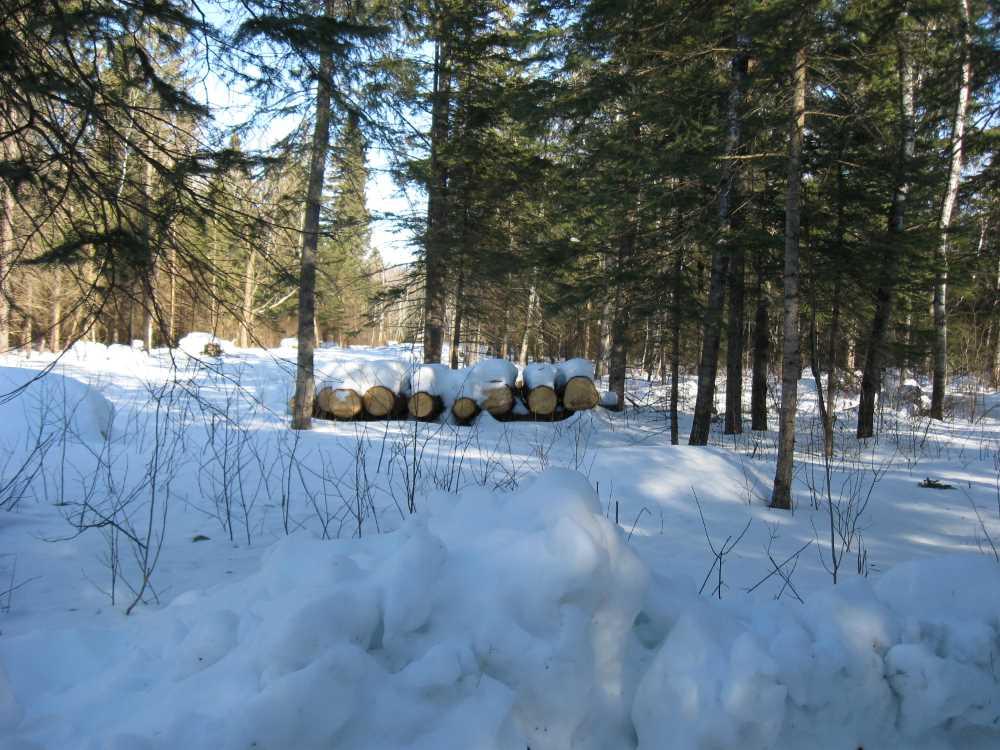 John Kundert's Manitoba Nudist Scrapbook: Gallery 06/09...Hydro tries winter pole installation