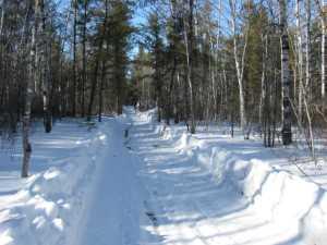 John Kundert's Manitoba Nudist Scrapbook: Gallery 06/12...Hydro tries winter pole installation