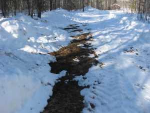 John Kundert's Manitoba Nudist Scrapbook: Gallery 06/24...Hydro tries winter pole installation