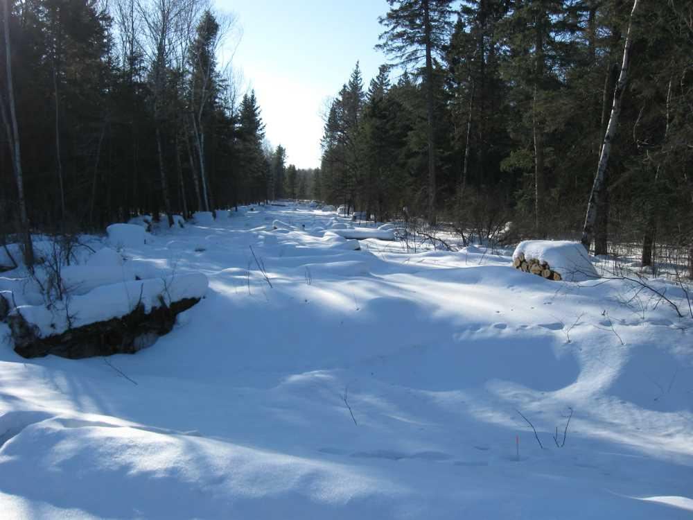 John Kundert's Manitoba Nudist Scrapbook: Gallery 06/30...Hydro tries winter pole installation
