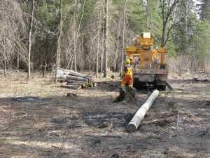 John Kundert's Manitoba Nudist Scrapbook: Gallery 07/01...Hydro installs poles for the power line