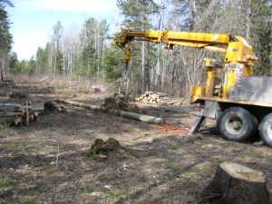 John Kundert's Manitoba Nudist Scrapbook: Gallery 07/08...Hydro installs poles for the power line