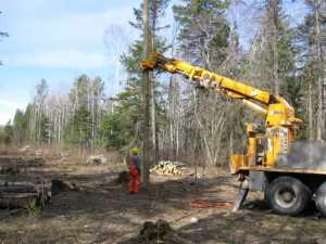 John Kundert's Manitoba Nudist Scrapbook: Gallery 07/10...Hydro installs poles for the power line