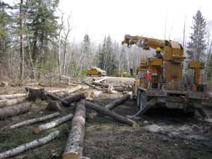 John Kundert's Manitoba Nudist Scrapbook: Gallery 07/15...Hydro installs poles for the power line