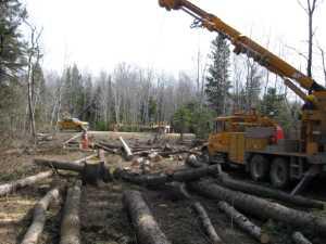 John Kundert's Manitoba Nudist Scrapbook: Gallery 07/16...Hydro installs poles for the power line