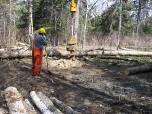 John Kundert's Manitoba Nudist Scrapbook: Gallery 07/18...Hydro installs poles for the power line