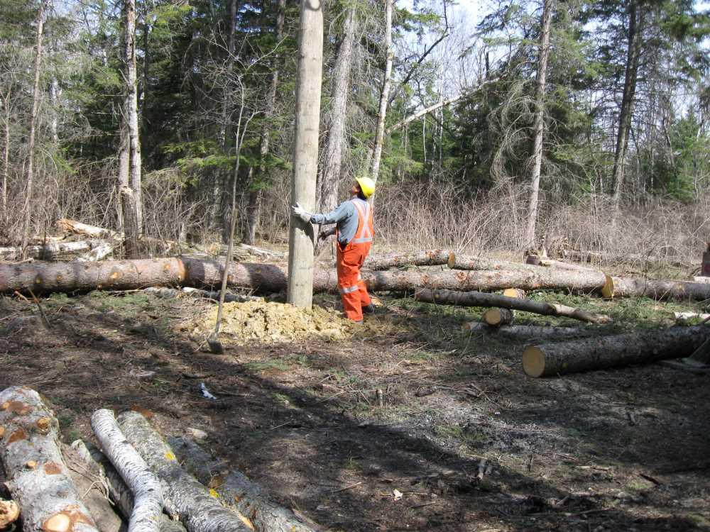 John Kundert's Manitoba Nudist Scrapbook: Gallery 07/21...Hydro installs poles for the power line