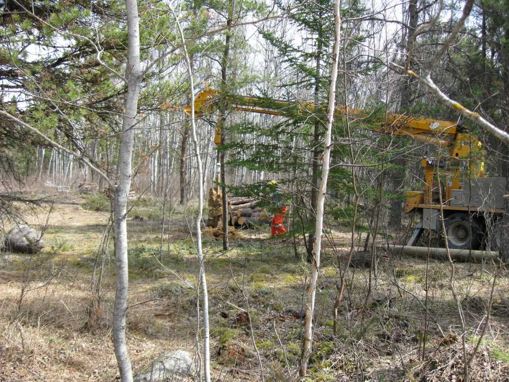 John Kundert's Manitoba Nudist Scrapbook: Gallery 07/32...Hydro installs poles for the power line