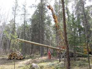 John Kundert's Manitoba Nudist Scrapbook: Gallery 07/33...Hydro installs poles for the power line