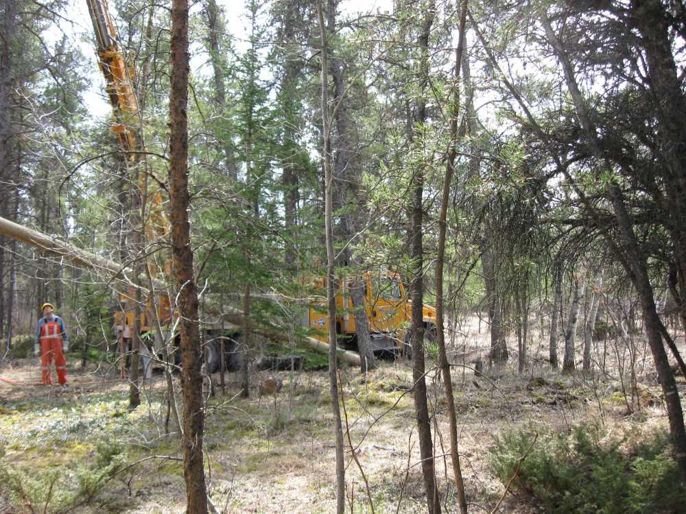 John Kundert's Manitoba Nudist Scrapbook: Gallery 07/34...Hydro installs poles for the power line