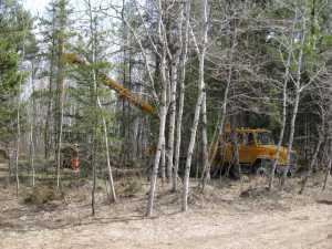 John Kundert's Manitoba Nudist Scrapbook: Gallery 07/36...Hydro installs poles for the power line