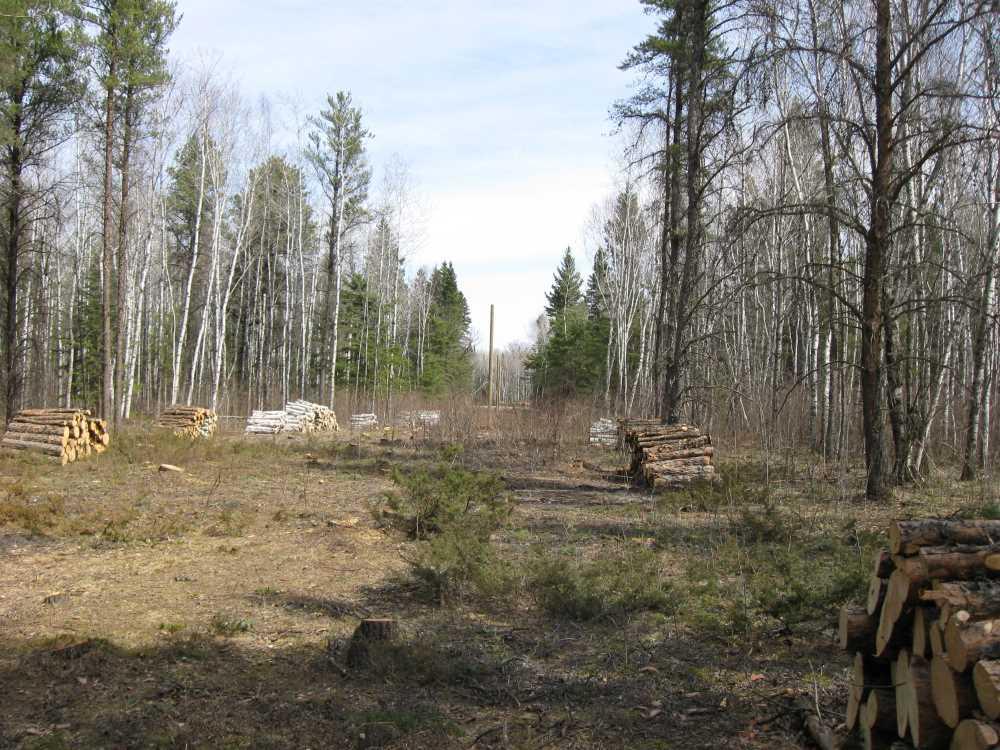 John Kundert's Manitoba Nudist Scrapbook: Gallery 07/40...Hydro installs poles for the power line