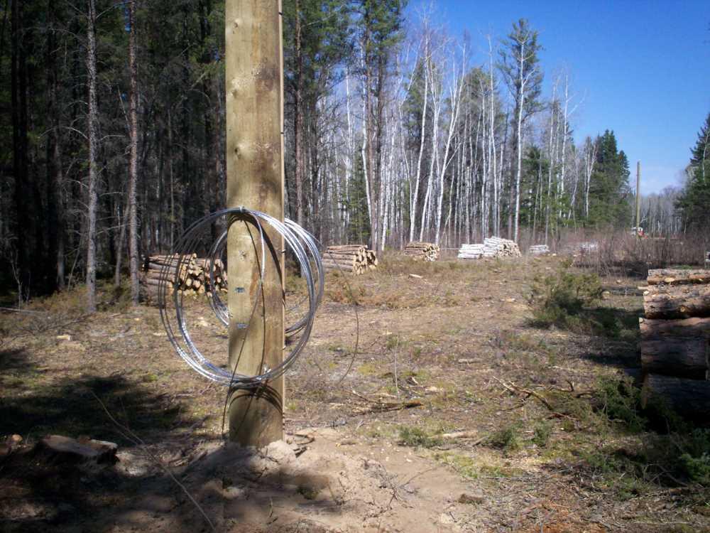 John Kundert's Manitoba Nudist Scrapbook: Gallery 08/28...Hydro installs wires and a transformer