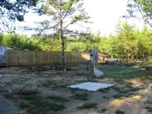 John Kundert's Manitoba Nudist Scrapbook: Gallery 35/01...Preparing for clubhouse construction